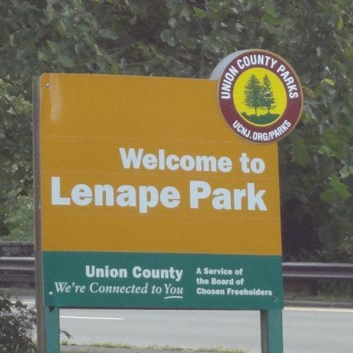 Clean Up at Lenape Park
