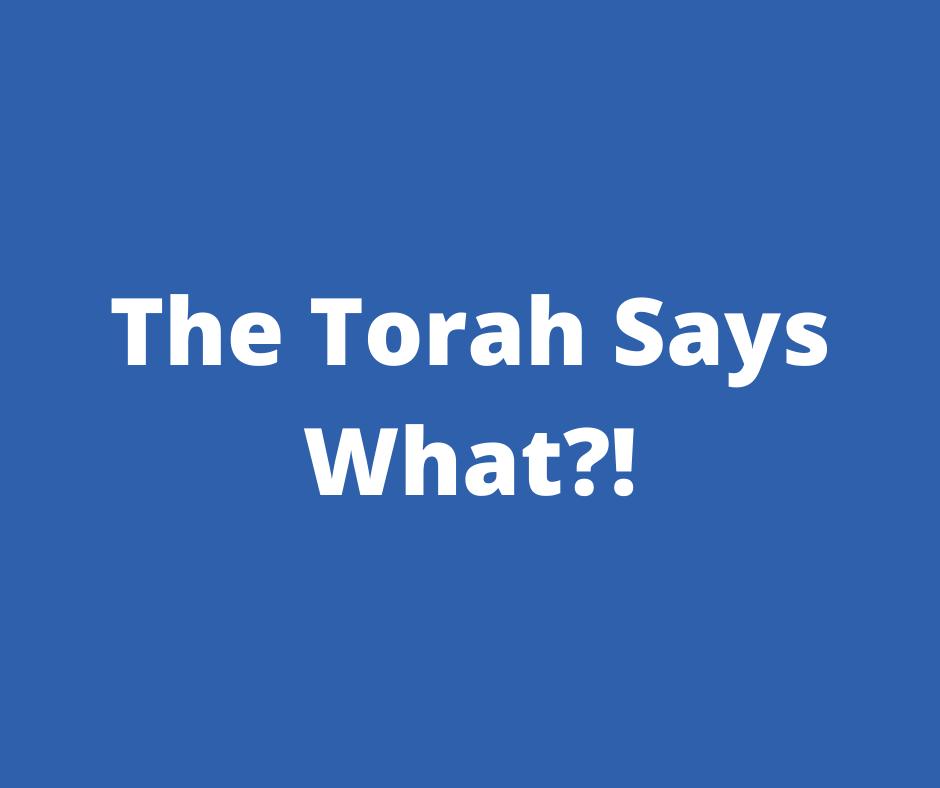 The Torah Says What_!